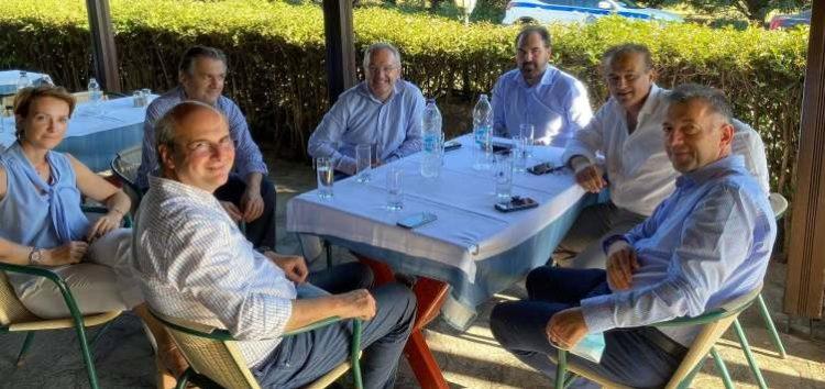 Ο βουλευτής Γιάννης Αντωνιάδης για την επίσκεψη του υπουργού Ενέργειας και Περιβάλλοντος Κωστή Χατζηδάκη