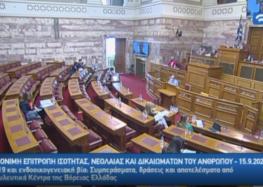 Συμμετοχή του Συμβουλευτικού Κέντρου Δήμου Φλώρινας στην Ειδική Μόνιμη Επιτροπή Ισότητας, Νεολαίας και Ανθρωπίνων Δικαιωμάτων της Βουλής