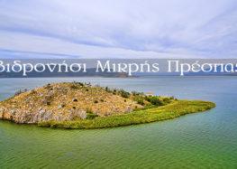 Βιδρονήσι: Η γαλήνια νησίδα της μικρής Πρέσπας (video)