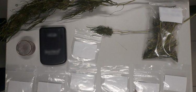 Συνελήφθησαν δύο άτομα στη Φλώρινα για καλλιέργεια και κατοχή ναρκωτικών ουσιών