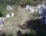 Σχολάζον κοιμητήριο Αγίου Νικολάου και έκκληση οικονομικής βοήθειας για τον καθαρισμό του