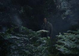 «Το Σιωπηλό Δάσος» από τον Αρκτούρο (video)