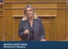 Π. Πέρκα: «Αναξιοποίητοι πόροι, ανεδαφικές μελέτες – η Κυβέρνηση ξαναβάζει το σιδηρόδρομο στις ράγες της οπισθοδρόμησης και τη Δυτική Μακεδονία στο περιθώριο»