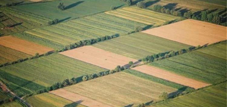 Ζητούνται αγροτεμάχια προς ενοικίαση
