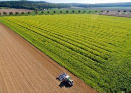 Ζητούνται αγροτικά κτήματα για αγορά ή ενοικίαση