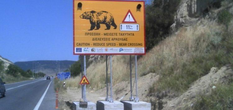 Τοποθέτηση αποτρεπτικών συστημάτων ατυχημάτων από διελεύσεις άγριας πανίδας στη νέα και παλαιά Ε.Ο. Αμυνταίου – Βεύης (pics)