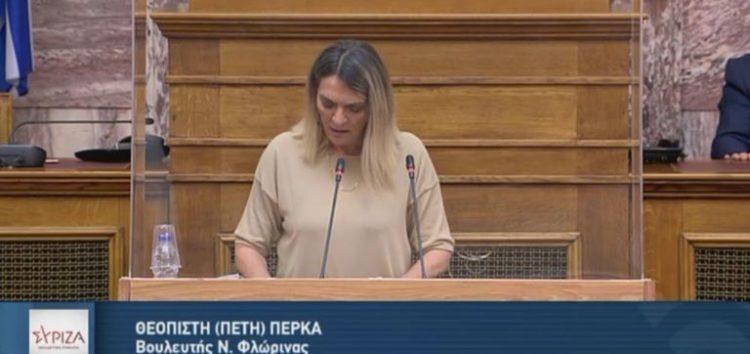 Π. Πέρκα: «Ερωτήματα για το ρόλο της  ΔΕΗ στο πλαίσιο της απολιγνιτοποίησης, για τις αποκαταστάσεις εδαφών, το επιχειρηματικό της πλάνο και την πολιτική της στις λιγνιτικές περιοχές»