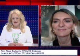 Η Π. Πέρκα για την ολική καταστροφή της δενδροκαλλιέργειας στην περιοχή Αμυνταίου (video)