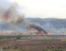 Εταιρία Προστασίας Πρεσπών: Ποτέ πια εγκληματικές φωτιές στον καλαμιώνα της Πρέσπας την άνοιξη!
