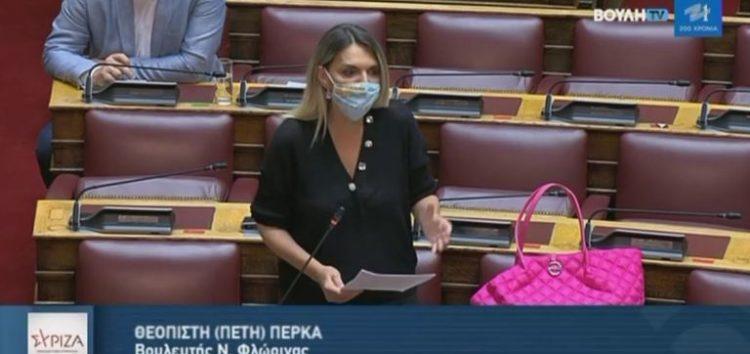 Π. Πέρκα: «Εκτός θέματος ο αρμόδιος Υπουργός για τις αποκαταστάσεις των εδαφών. Καμία απάντηση στα κρίσιμα ερωτήματα»