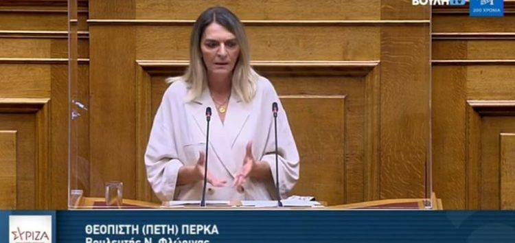 Η Βουλευτής ΣΥΡΙΖΑ – ΠΣ Φλώρινας Π. Πέρκα για την ανακοίνωση της ελάχιστης βάσης εισαγωγής στην Τριτοβάθμια εκπαίδευση