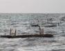 Εικαστικό project«Ψυχή στο Λαιμό 2021» Δύο Μικρές Θάλασσες – Εικαστική παρείσφρηση σε τρία αγροτόσπιτα στην Πρέσπα (Λαιμός & Μηλιώνας)