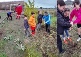 Ακαδημία Ποδοσφαίρου ΠΑΣ Φλώρινα: «Φυτεύοντας ένα δέντρο φυτεύεις την ελπίδα» (pics)