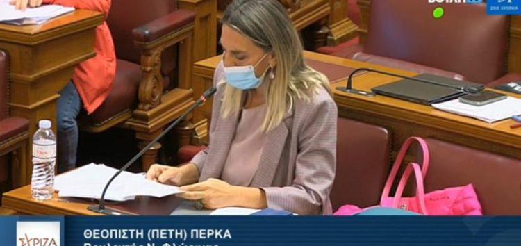 Π. Πέρκα: «Οι φορείς επισημαίνουν τις ελλείψεις του σχεδιασμού της Κυβέρνησης επί του νομοσχεδίου ενεργειακής απόδοσης, ενεργειακών κοινοτήτων, antitrust υπόθεση Ευρωπαϊκής Επιτροπής και άλλες ρυθμίσεις»