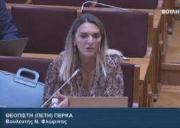 Π. Πέρκα: «Η Κυβέρνηση του ΣΥΡΙΖΑ παρέλαβε τη ΔΕΗ εγκλωβισμένη σε ένα πλέγμα προβλημάτων και δεσμεύσεων» (video)